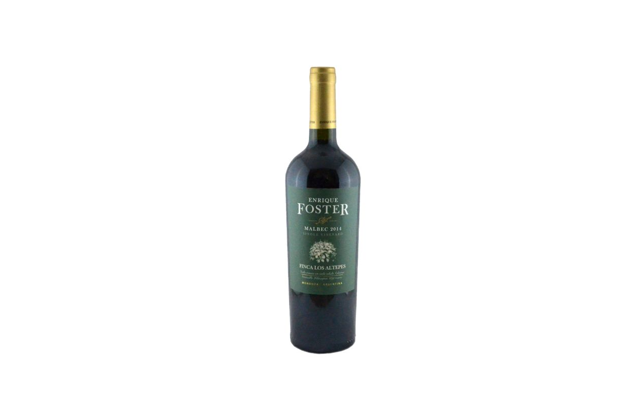 enrique-foster-malbec-single-vineyard-verde-1248×800
